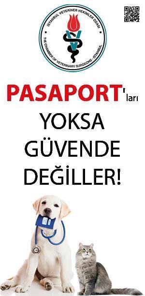 Pasaport Yoksa Güvende Değiller!-Mert-Eden